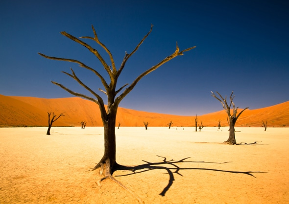 Bernard Pieterse's winning entry entitled Sossusvlei © Bernard Pieterse, Youth Category Winner, Environment, Sony World Photography Awards 2012