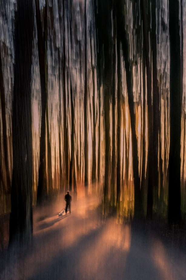 creative abstract of a man and his dog in the forest nadia de Lange