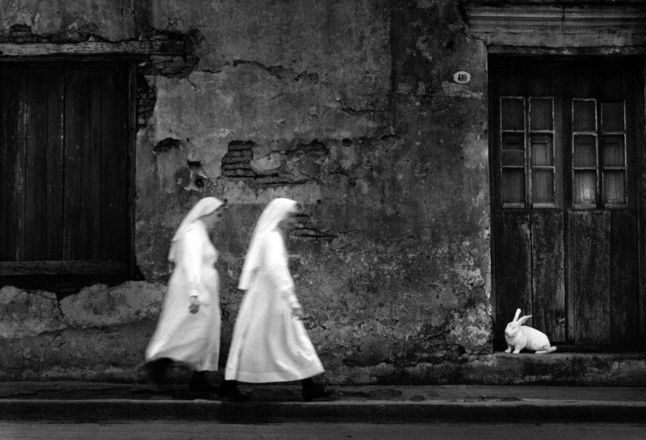 Photo by Pedro Luis Raota